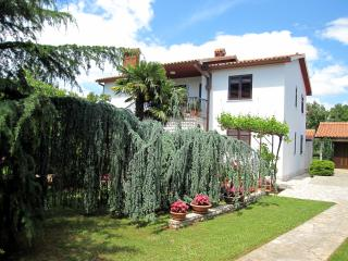 Apartment near Labin in calm green place - Ravni vacation rentals