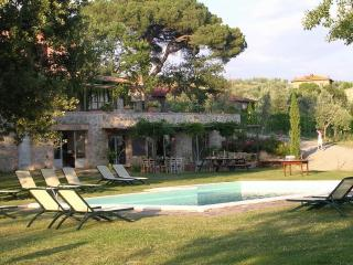chianti wine estate near Siena T4C - Vagliagli vacation rentals