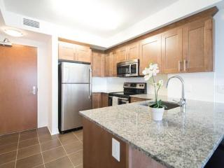 Central Downtown Suite - City Views - Ottawa vacation rentals