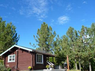 LOG-CABIN + SPA + Mountain & Forest VIEWS + Creek - Julian vacation rentals