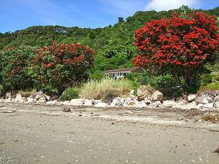 Maple's Den - South Island vacation rentals
