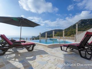 Luxury twin villas with pool Budva - Budva vacation rentals