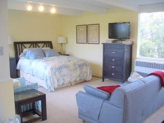 Oakland-Rockridge. Views. BART/Bus/SF/UC. Sleeps 4 - Oakland vacation rentals