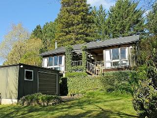 Nessling Lodge - Turangi vacation rentals