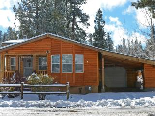 TV, WiFi, BBQ, close to sledding - Big Bear City vacation rentals