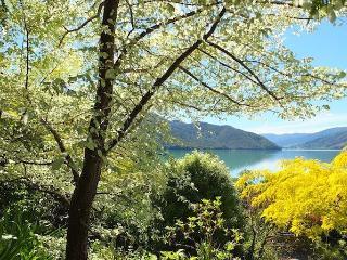 Pukenui Paradise - Havelock vacation rentals