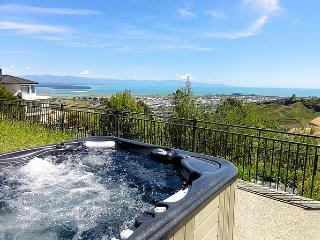 Panoramic Paradise - Tahunanui vacation rentals