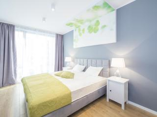 Superior One Bedroom Apartment Ireland - Wroclaw vacation rentals