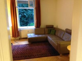Two br apartment in city centre near Rhine - Aargau / Basel vacation rentals