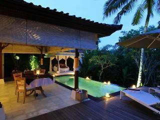 Hidden Paradise for a Couple - Ubud vacation rentals