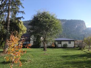 Bright new suite on organic farm in north Okanagan - Silver Star Mountain vacation rentals