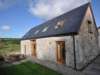 CWRTY - Llandyfaelog vacation rentals