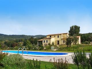 villa della fonte - Monteverdi Marittimo vacation rentals