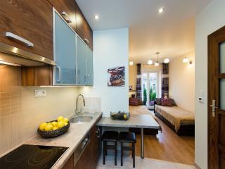 3bdr 2bth Vanilla 2 Apartment 5min to Main Square - Krakow vacation rentals