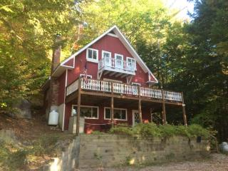 Huge Eidelweiss Home sleeps 16 - Conway vacation rentals