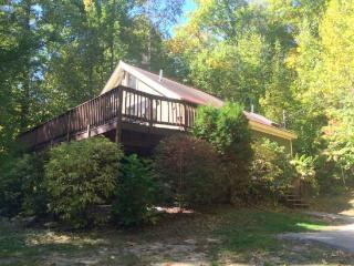 Walk to the Beach in 1 minute. A/C, Wifi and great deck - Conway vacation rentals