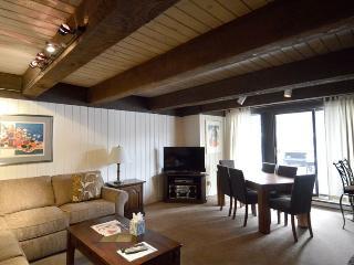 Chateau Roaring Fork Unit 20 - Aspen vacation rentals