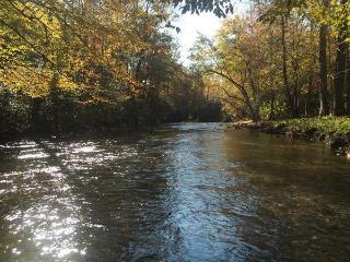 Cabin on Fires Creek - Hayesville vacation rentals