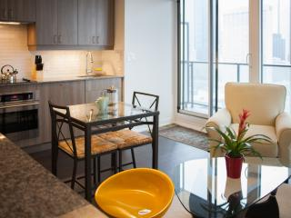 Walk Everywhere! Downtown Condo - Toronto vacation rentals