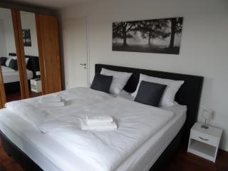 Underhill - a modern 1 bedroom Munich apartment - Munich vacation rentals