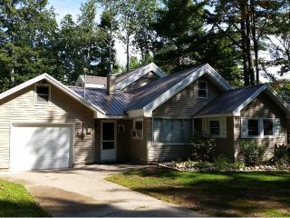 Perfect Cottage with Internet Access and A/C - Gaylord vacation rentals