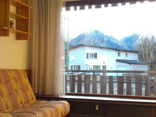 1 bedroom Apartment with Internet Access in Les Deux-Alpes - Les Deux-Alpes vacation rentals