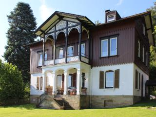 Nice Condo with Internet Access and Satellite Or Cable TV - Bad Harzburg vacation rentals