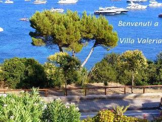 Wonderful 4 bedroom Villa in Ogliastro Cilento - Ogliastro Cilento vacation rentals