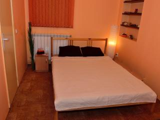 Cozy House in Sinaia with Wireless Internet, sleeps 6 - Sinaia vacation rentals