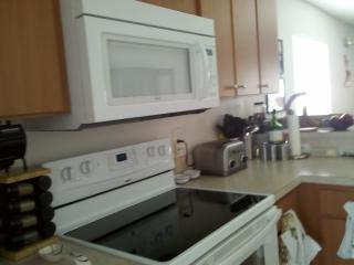 Beautiful Lake Marion 2-bed in Palm Tree Paradise - Poinciana vacation rentals