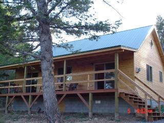 Large Family Cabin Near Yellowstone National Park - Wyoming vacation rentals