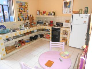 Casa roja, downstairs apartment - San Miguel de Allende vacation rentals