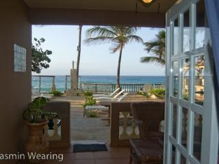 Beachfront Pelican Point AptD Right on Sandy Beach - Rincon vacation rentals