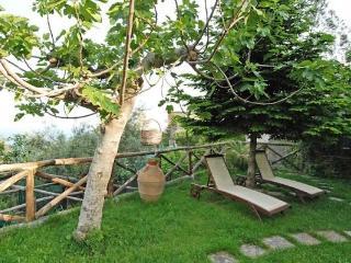 Apartment Clover - Sorrento vacation rentals