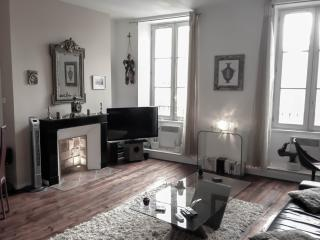 Luxury apartment-heart of Bordeaux-classified 3*** - Bordeaux vacation rentals