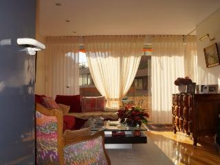 2 sleeps apartment in city center - Toulouse vacation rentals
