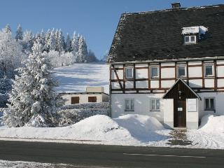 Nice Condo with Internet Access and Mountain Views - Altenberg vacation rentals