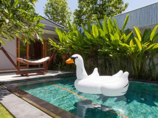 Brand New Luxury Villa with Super Fast Internet! - Seminyak vacation rentals