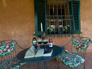 Fattoria Primavera - Casale Boscone - Apt.n.8 - Gambassi Terme vacation rentals