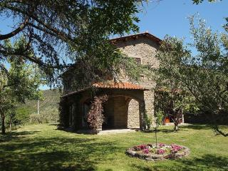 Perfect Farmhouse Barn with Internet Access and Central Heating - Pergo di Cortona vacation rentals