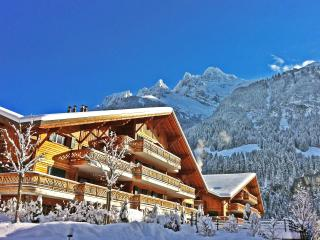 Beautiful 2 bedroom Apartment in Champéry with Internet Access - Champéry vacation rentals