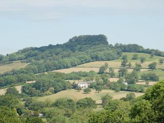 Orchard Barn nr Honiton with 200 acres of parkland - Luppitt vacation rentals