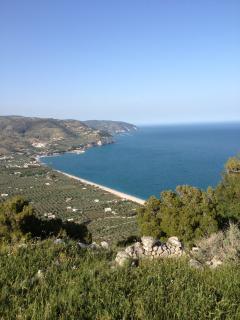 Villetta singola immersa in un fantastico agrumeto - Mattinata vacation rentals