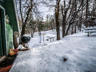 Moonridge Oak Retreat #989 ~ RA46176 - Big Bear City vacation rentals