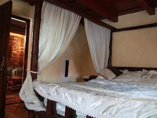 Casa Madac in the heart of Transylvania,Bagaciu - Tirgu Mures vacation rentals