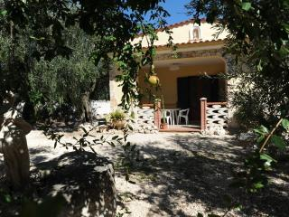 Villa singola immersa in uno splendido uliveto - Mattinata vacation rentals