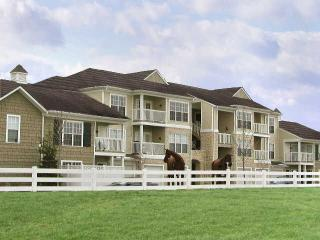 Great 1 BD in Dublin(FRM5222) - Columbus vacation rentals