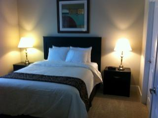 Great 1 BD in Dublin(STR408) - Dublin vacation rentals