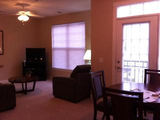 Wonderful 1 BD in Downtown(WAV160I) - Indianapolis vacation rentals