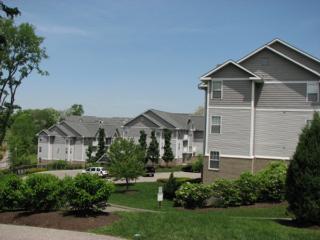Awesome 1 BD near Hyde Park(CSA29) - Cincinnati vacation rentals
